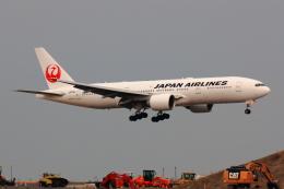 こだしさんが、羽田空港で撮影した日本航空 777-246/ERの航空フォト(写真)