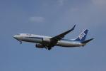 しかばねさんが、成田国際空港で撮影した全日空 737-881の航空フォト(写真)