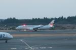 ぷぅぷぅまるさんが、成田国際空港で撮影した日本航空 787-846の航空フォト(写真)