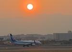 monjiro22001さんが、伊丹空港で撮影した全日空 737-881の航空フォト(写真)