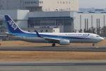 まんぼ しりうすさんが、伊丹空港で撮影した全日空 737-881の航空フォト(写真)
