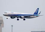 tuckerさんが、羽田空港で撮影した全日空 A321-211の航空フォト(写真)