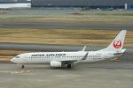 timeさんが、羽田空港で撮影した日本航空 737-846の航空フォト(写真)