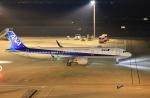 O-TOTOさんが、羽田空港で撮影した全日空 A321-211の航空フォト(写真)