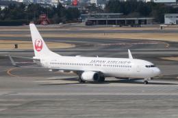職業旅人さんが、伊丹空港で撮影した日本航空 737-846の航空フォト(写真)