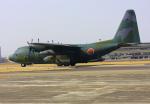 VICTER8929さんが、名古屋飛行場で撮影した航空自衛隊 C-130H Herculesの航空フォト(写真)