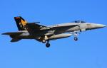 VICTER8929さんが、厚木飛行場で撮影したUS NAVYの航空フォト(写真)