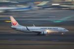 AokaiE531さんが、羽田空港で撮影した日本航空 737-846の航空フォト(写真)