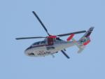 tetuさんが、札幌飛行場で撮影した朝日航洋 AS365N3 Dauphin 2の航空フォト(写真)