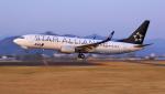 ji5islさんが、高知空港で撮影した全日空 737-881の航空フォト(写真)
