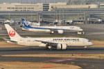 とりてつさんが、羽田空港で撮影した日本航空 787-846の航空フォト(写真)