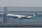 レンタくんさんが、羽田空港で撮影したエバー航空 A330-302の航空フォト(写真)