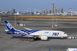 sukiさんが、羽田空港で撮影した全日空 787-881の航空フォト(写真)