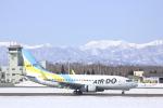 あんとのふさんが、帯広空港で撮影したAIR DO 737-781の航空フォト(写真)