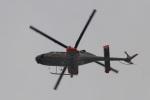 camelliaさんが、厚木飛行場で撮影した朝日航洋 430の航空フォト(写真)