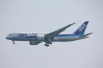フレッシュマリオさんが、羽田空港で撮影した全日空 787-881の航空フォト(写真)