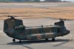 じーのさんさんが、八丈島空港で撮影した陸上自衛隊 CH-47JAの航空フォト(写真)