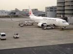 よんすけさんが、羽田空港で撮影した日本航空 737-846の航空フォト(写真)