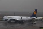reonさんが、上海浦東国際空港で撮影したルフトハンザドイツ航空 A340-642の航空フォト(写真)