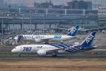 airbandさんが、羽田空港で撮影した全日空 787-881の航空フォト(写真)