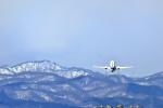 渚くんさんが、函館空港で撮影した全日空 737-881の航空フォト(写真)