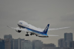 saku39さんが、羽田空港で撮影した全日空 787-9の航空フォト(写真)