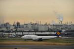 saku39さんが、羽田空港で撮影したルフトハンザドイツ航空 747-830の航空フォト(写真)