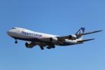 AokaiE531さんが、成田国際空港で撮影した日本貨物航空 747-8KZF/SCDの航空フォト(写真)