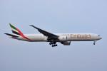 トロピカルさんが、成田国際空港で撮影したエミレーツ航空 777-31H/ERの航空フォト(写真)
