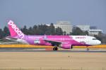 トロピカルさんが、成田国際空港で撮影したピーチ A320-214の航空フォト(写真)