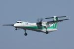 のぐちゃんさんが、新潟空港で撮影したANAウイングス DHC-8-402Q Dash 8の航空フォト(写真)