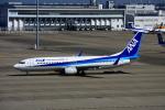 きったんさんが、中部国際空港で撮影した全日空 737-881の航空フォト(写真)