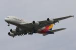 Kinyaさんが、ロサンゼルス国際空港で撮影したアシアナ航空 A380-841の航空フォト(写真)