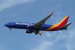 Kinyaさんが、ロサンゼルス国際空港で撮影したサウスウェスト航空 737-8H4の航空フォト(写真)