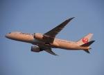 jjieさんが、関西国際空港で撮影した日本航空 787-846の航空フォト(写真)