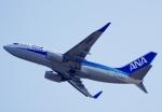 CB20さんが、関西国際空港で撮影した全日空 737-781の航空フォト(写真)
