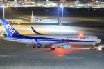 スターアライアンスKMJ H・Rさんが、羽田空港で撮影した全日空 767-381/ERの航空フォト(写真)