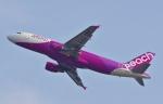 CB20さんが、関西国際空港で撮影したピーチ A320-214の航空フォト(写真)