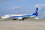 A-Chanさんが、那覇空港で撮影した全日空 737-881の航空フォト(写真)