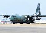 jp arrowさんが、名古屋飛行場で撮影した航空自衛隊 C-130H Herculesの航空フォト(写真)
