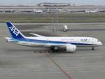 MiyaYuniさんが、羽田空港で撮影した全日空 787-881の航空フォト(写真)