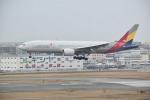 ハヤテさんが、福岡空港で撮影したアシアナ航空 777-28E/ERの航空フォト(写真)