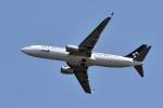 sonnyさんが、羽田空港で撮影した全日空 737-881の航空フォト(写真)
