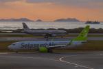 岡崎美合さんが、那覇空港で撮影したソラシド エア 737-81Dの航空フォト(写真)