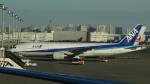 AE31Xさんが、羽田空港で撮影した全日空 777-281の航空フォト(写真)