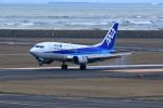 TAKAHIDEさんが、新潟空港で撮影したANAウイングス 737-54Kの航空フォト(写真)