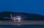 rsn39762さんが、岡山空港で撮影したタイガーエア 台湾 A320-232の航空フォト(写真)