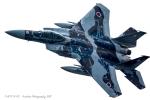 michioさんが、茨城空港で撮影した航空自衛隊 F-15DJ Eagleの航空フォト(写真)
