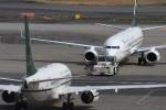 B747‐400さんが、羽田空港で撮影したサウジアラビア財務省 737-7FGの航空フォト(写真)