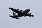 MOHICANさんが、福岡空港で撮影した航空自衛隊 C-130H Herculesの航空フォト(写真)